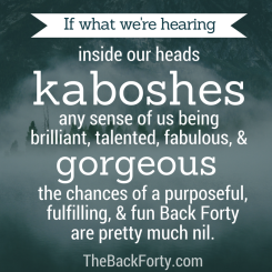 """If what we're hearing inside our heads kaboshes any sense of us being brilliant, talented, fabulous, and gorgeous, the chances of a purposeful, fulfilling, and fun Back Forty are pretty much nil."" - Darrell Gurney, Co-Founder of The Back Forty"
