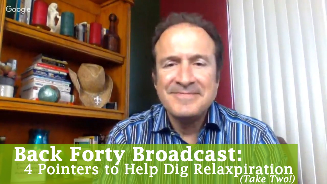 4 Pointers to Help Digg Relaxspiration (4-5-17) - Take Two