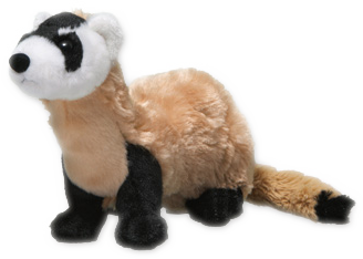 Black-footed-Ferret-plush-z1.png